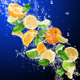 Tropiska frukter Arkivbild