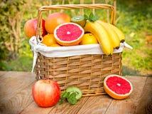Tropiska frukter - exotiska frukter Arkivbilder