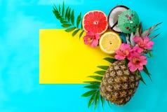 Tropiska frukter för sommar Arkivbild