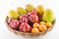 Tropiska frukter och grönsaker fotografering för bildbyråer