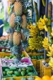 Tropiska frukter på marknad Royaltyfri Foto