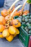 Tropiska frukter på marknad Arkivbilder