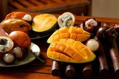 Tropiska frukter: passionfrukt, rambutan, mangosteen och mango arkivbild