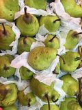 Tropiska frukter Singapore Arkivbild