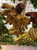 Tropiska frukter Singapore Royaltyfri Bild