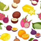 Tropiska frukter ställde in den sömlösa modellen citrus citronorange vektor illustrationer