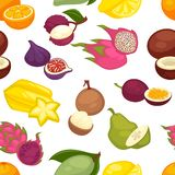Tropiska frukter ställde in den sömlösa modellen citrus citronorange royaltyfri illustrationer