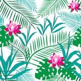 Tropiska gröna sidor, rosa lotusblommablommor vektor illustrationer