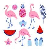 Tropiska grafiska beståndsdelar för sommar vänner två Blommar blom- illustrationer för djungeln, palmblad, orkidé, ananas, vatten Royaltyfri Foto