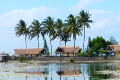 Tropiska hus och damm som räknas av liljar Fotografering för Bildbyråer