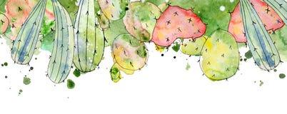 Tropiska kaktusordningar, gränser, ramvattenfärgkakturs skrivar ut stock illustrationer