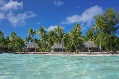 Tropiska kustlinjebungalower och kokospalmer Polynesien arkivfoton