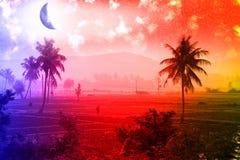 Tropiska landskap, gömma i handflatan dungar, risfält, jordbruksmarker med tropiska färger Arkivfoton