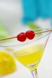 tropiska martini arkivbilder
