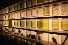 Tropiska matingredienser som visas på Singapore det nationella museet Royaltyfri Foto