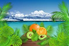 Tropiska nya frukter för sommartid Royaltyfri Foto