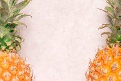 Tropiska och säsongsbetonade sommarfrukter Ananas som är ordnad med tomt utrymme i mitt av bakgrunder, sund livsstil royaltyfri fotografi