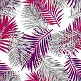 Tropiska palmblad, djungel l?mnar den s?ml?sa vektorn blom- modellbakgrund royaltyfri illustrationer