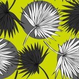 Tropiska palmblad, djungel l?mnar den s?ml?sa vektorn blom- modellbakgrund vektor illustrationer