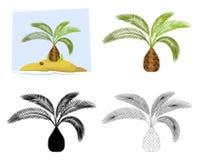tropiska palmträd vektor Arkivbilder