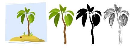 tropiska palmträd vektor Royaltyfria Bilder