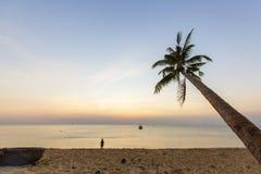 Tropiska palmträd för paradisstrandsolnedgång Royaltyfria Bilder