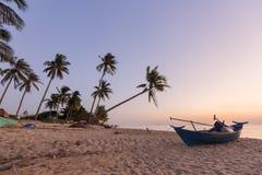 Tropiska palmträd för paradisstrandsolnedgång Royaltyfria Foton