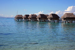tropiska polynesia Royaltyfri Bild