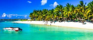 Tropiska semestrar i den Mauritius ön arkivbilder
