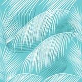 Tropiska sidor av den sömlösa modellen för palmträd Royaltyfri Foto