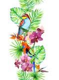 Tropiska sidor, den exotiska papegojafågeln, orkidé blommar seamless kant Ram för vattenfärg royaltyfri illustrationer