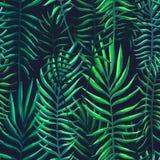 Tropiska sidor, djungelmodell Sömlös, detaljerad botanisk modell Det kan vara nödvändigt för kapacitet av designarbete royaltyfri illustrationer