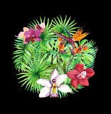 Tropiska sidor, exotiska blommor Blom- modell för cirkel vattenfärg Royaltyfri Bild
