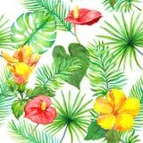 Tropiska sidor, exotiska blommor seamless djungelmodell akvarell Royaltyfri Bild