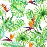 Tropiska sidor, exotiska blommor seamless djungelmodell vattenfärg arkivfoto