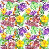 Tropiska sidor, exotiska blommor seamless djungelmodell vattenfärg Royaltyfria Bilder
