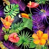 Tropiska sidor, exotiska blommor, tukanfågel, gecko seamless wallpaper vattenfärg Fotografering för Bildbyråer