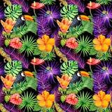 Tropiska sidor, exotiska blommor, tukanfågel, gecko seamless wallpaper vattenfärg Arkivbilder