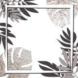 Tropiska sidor för silver med ramen Arkivfoto