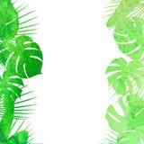 Tropiska sidor för vattenfärg Stock Illustrationer