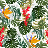 Tropiska sidor och blommor av palmträdet seamless modell Arkivbild