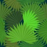 Tropiska sidor och blommor av palmträdet seamless modell Arkivfoto
