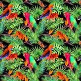 Tropiska sidor, papegojafåglar, exotiska blommor Sömlös djungelmodell på svart bakgrund vattenfärg stock illustrationer