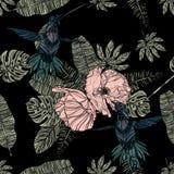 Tropiska sidor, vallmo och sömlös modell för kolibri royaltyfri illustrationer