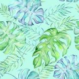Tropiska stora sidor för vattenfärg vektor illustrationer