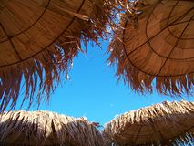 Tropiska Straw Beach Umbrellas Royaltyfri Fotografi