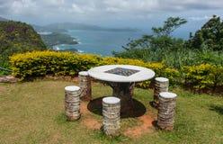 Tropiska tabellchears Arkivfoto