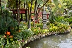 Tropiska trädgårdar i Monte Palace fotografering för bildbyråer