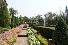 Tropiska trädgårds- Nong Nooch Arkivfoton