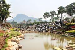 Tropiska trädgårds- Nong Nooch, sjö Arkivbild